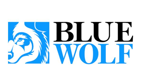 Blue Wolf Capital